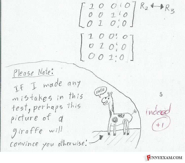 http://smileq8dotcom.files.wordpress.com/2011/10/giraffe.jpg