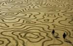Sand_Crop_Circles_01