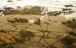 Sand_Crop_Circles_13