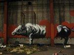 Animal_Graffiti_09