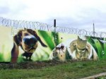 graffiti_russia_01